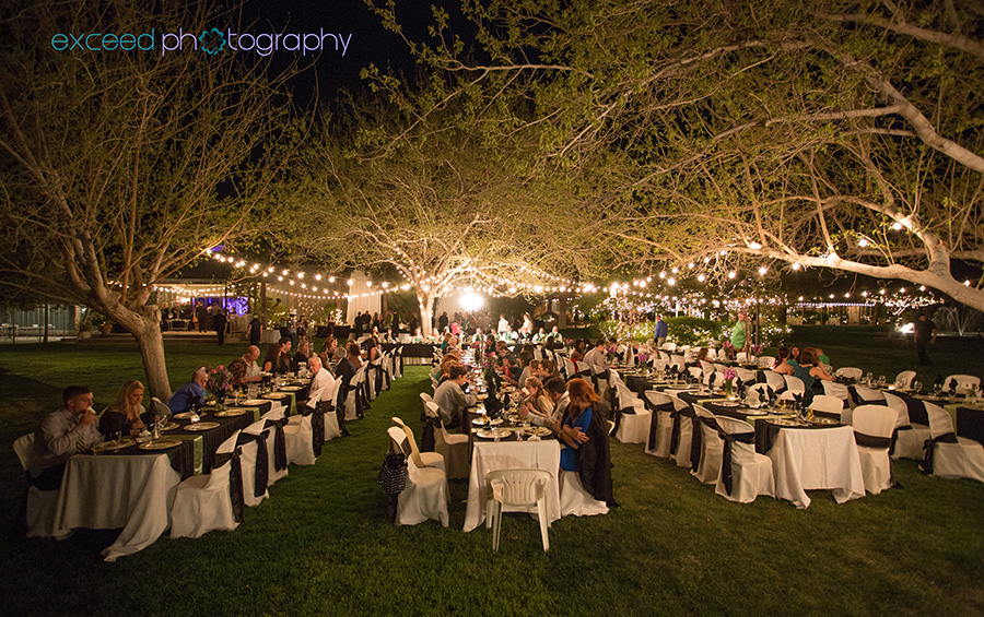 Las Vegas Wedding Photographer Jennifer and Bill Wedding at the