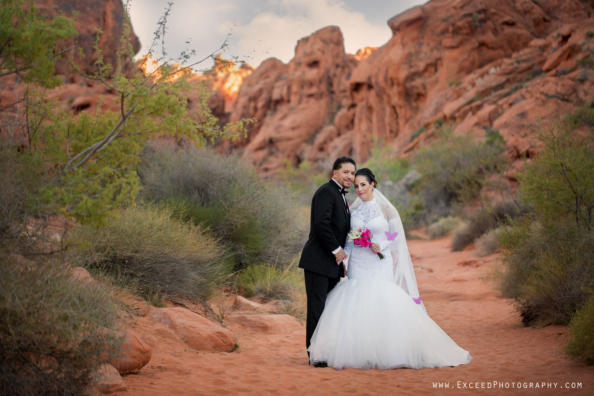 valley-of-fire-wedding-photos_0001