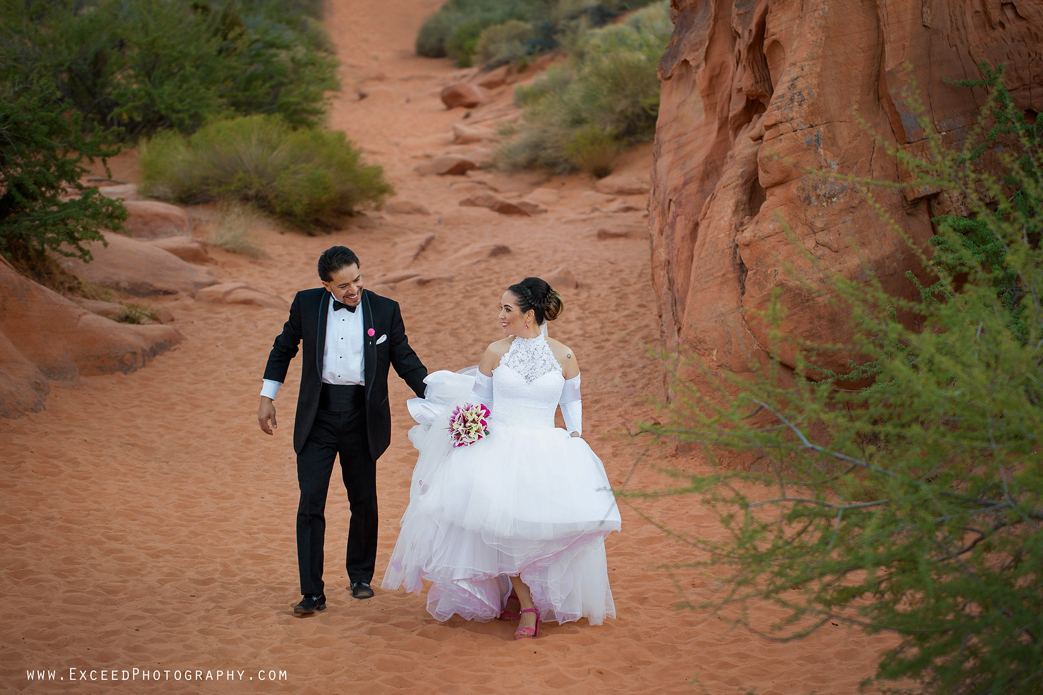 valley-of-fire-wedding-photos_0003