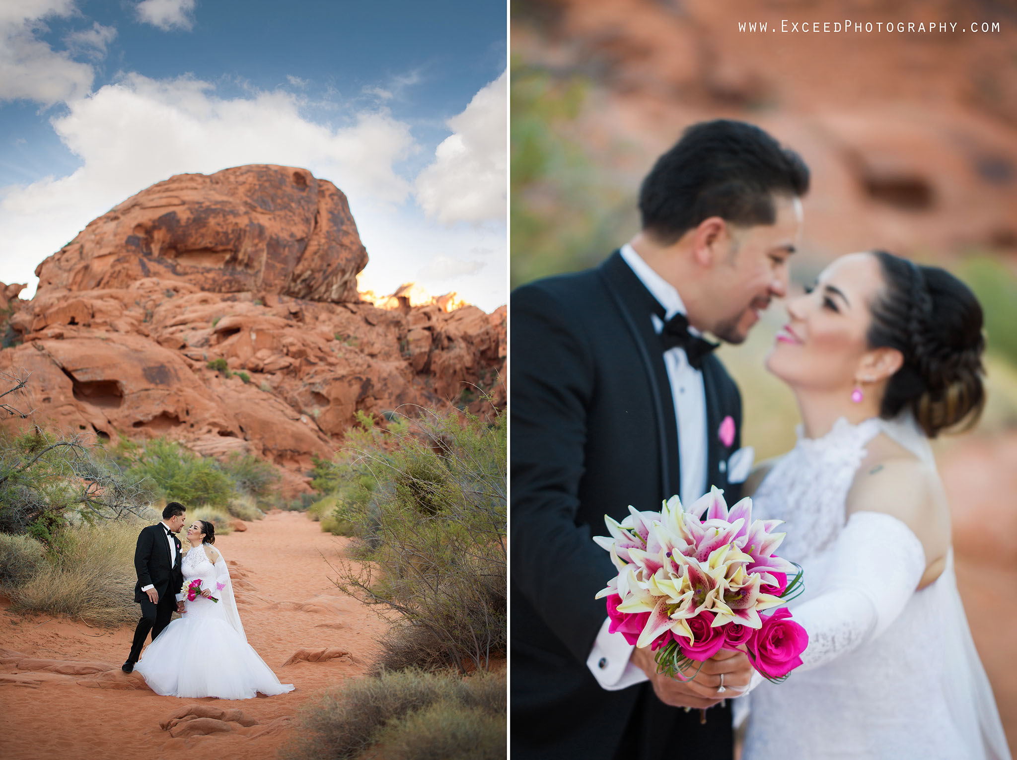 valley-of-fire-wedding-photos_0006