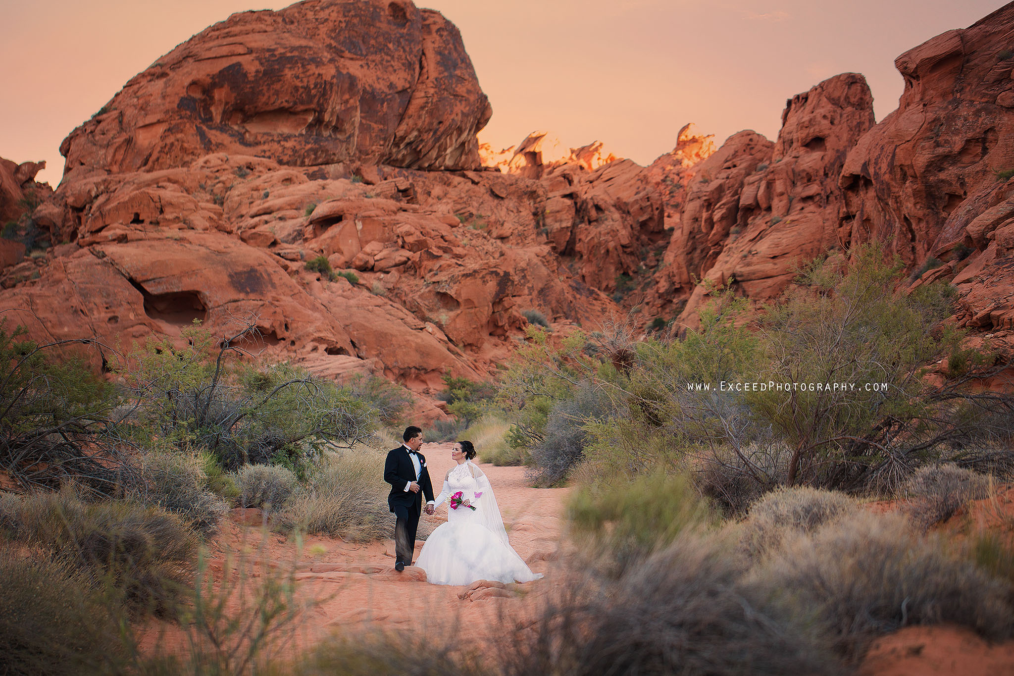 valley-of-fire-wedding-photos_0007