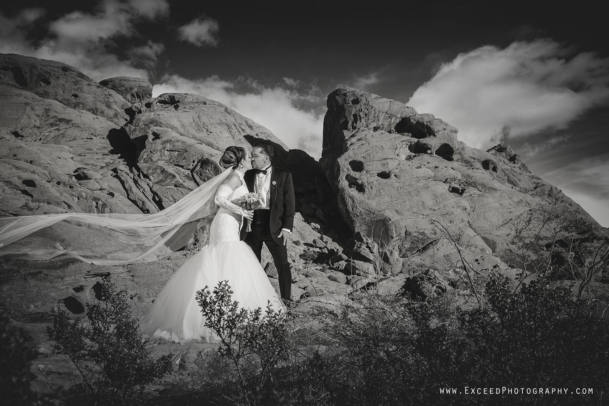 valley-of-fire-wedding-photos_0008