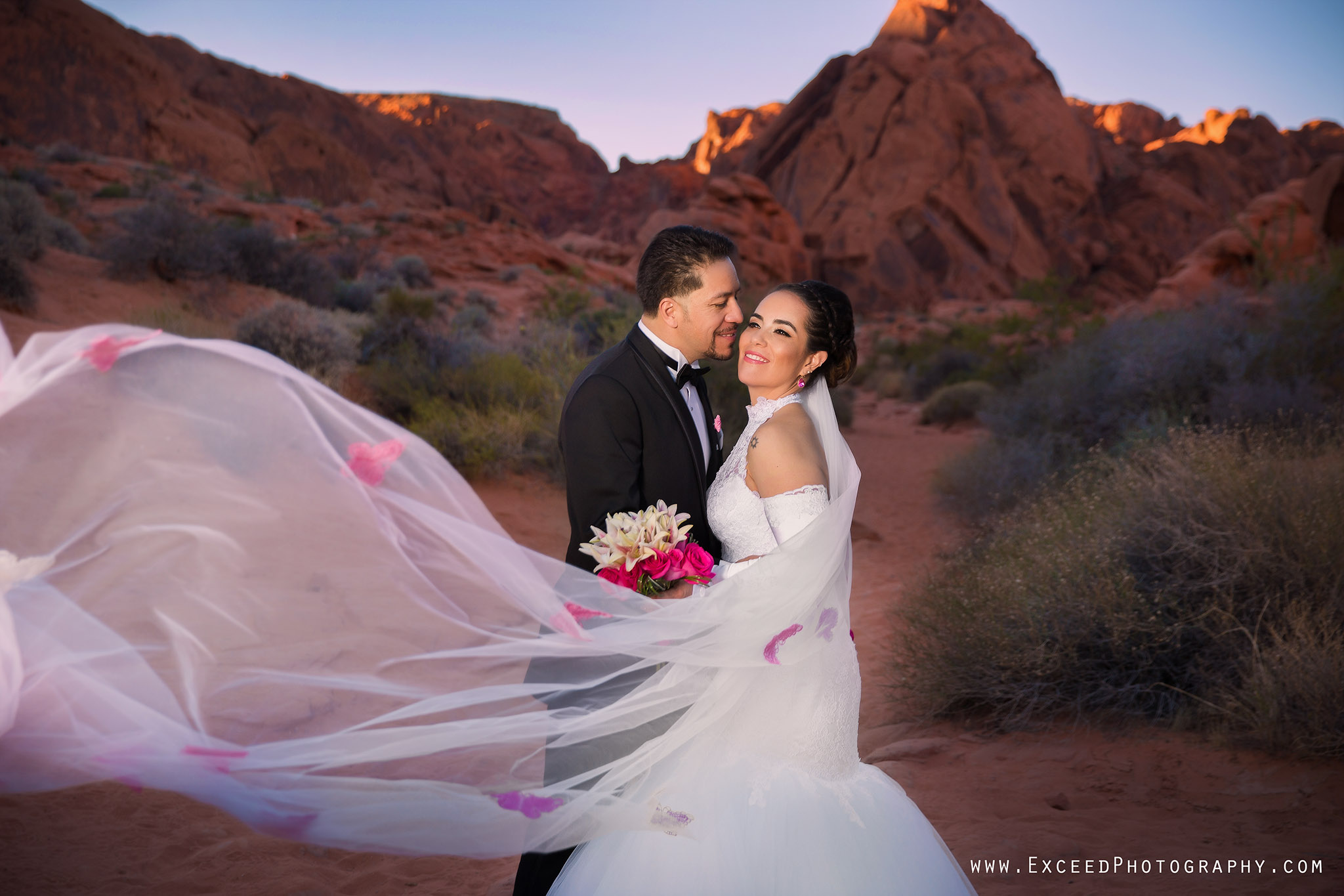 valley-of-fire-wedding-photos_0011