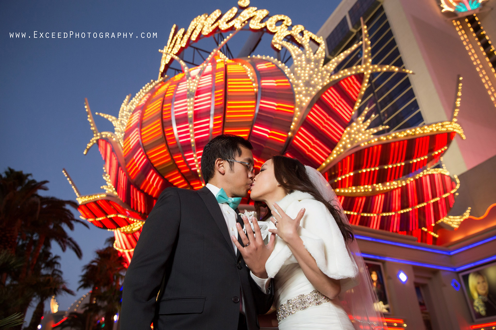 Flamingo Wedding Ceremony And The Reception At The