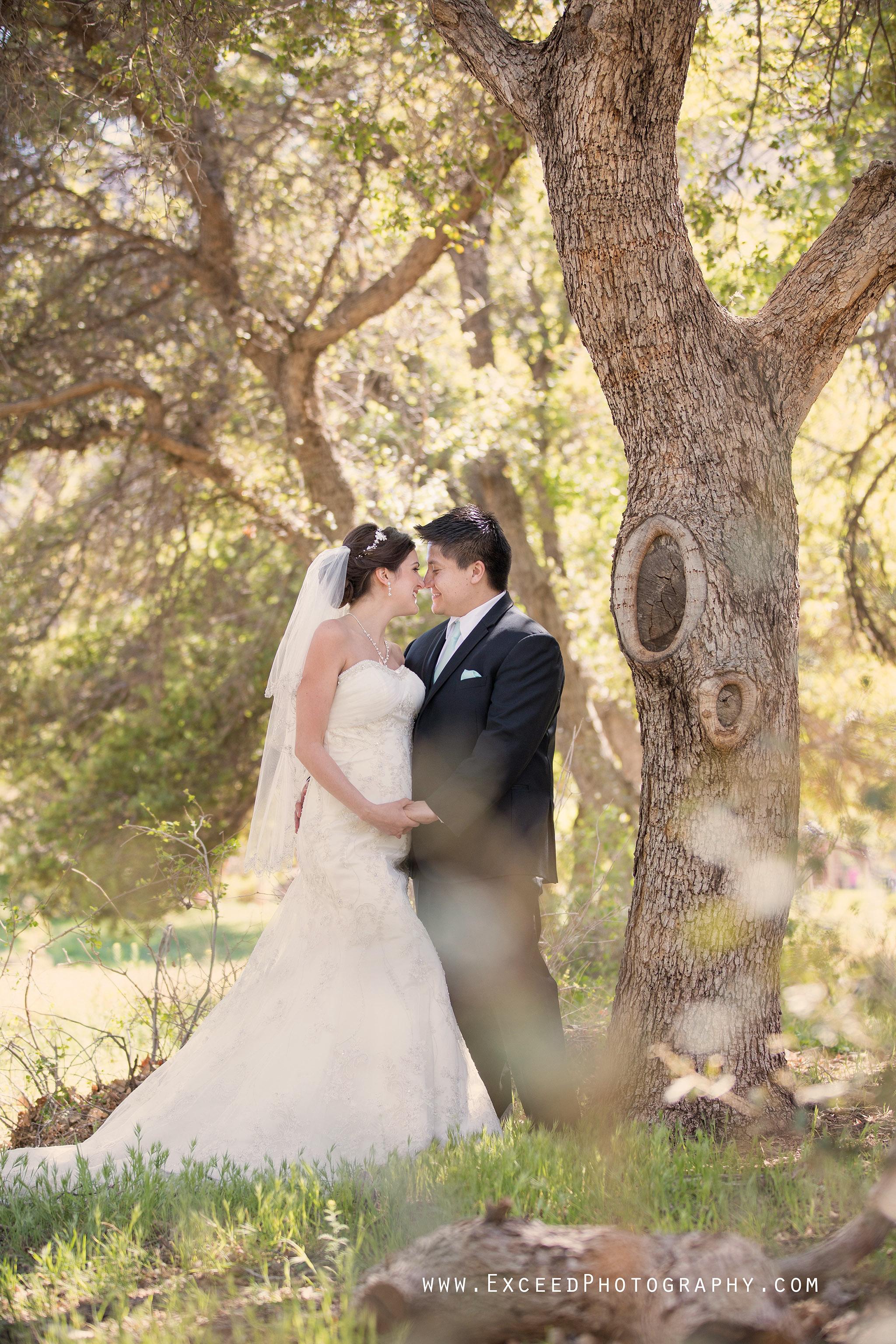 spring mountain ranch wedding erika frank creative